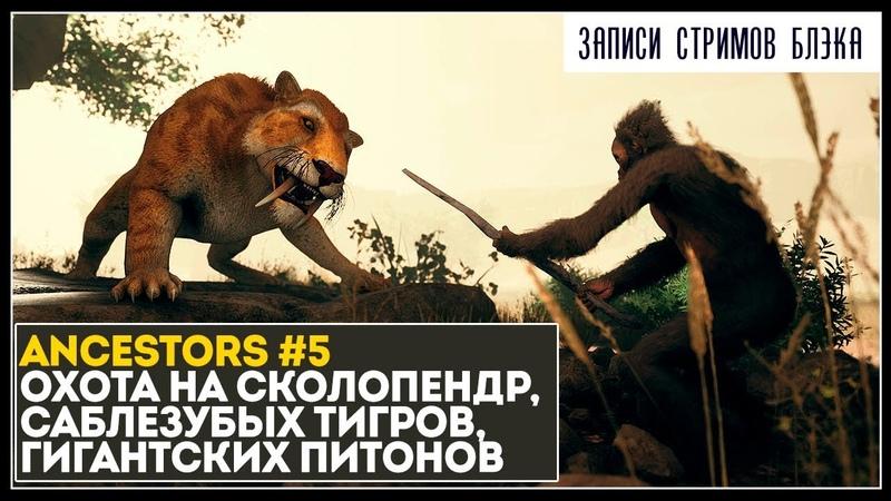Великий исход на юг война со сколопендрами тиграми питонами Ancestors 5