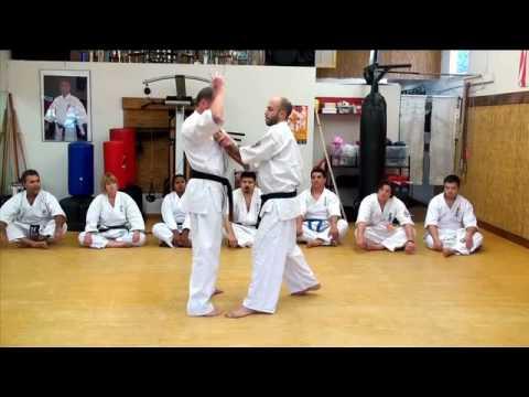 Kyokushin Kan Karate training