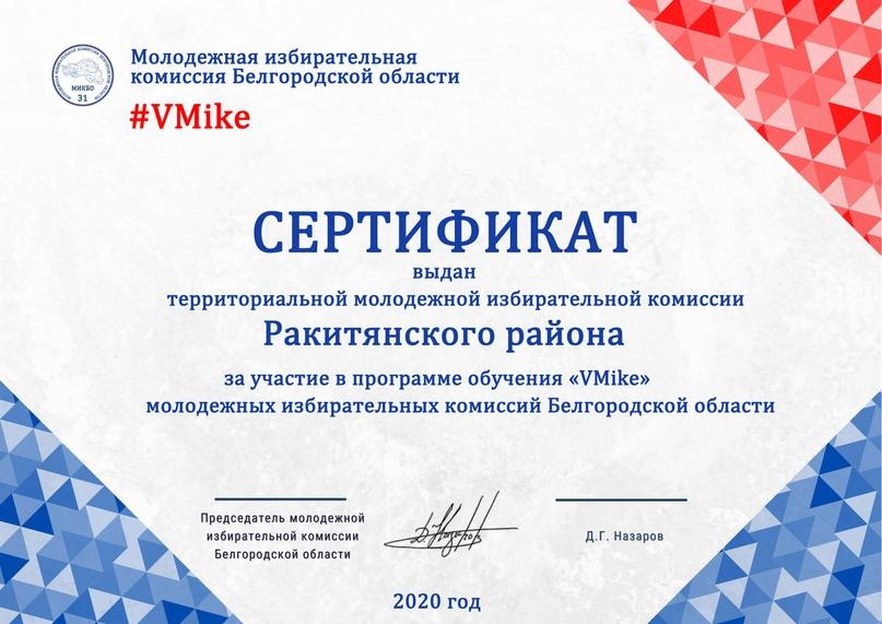 Итоги программы обучения молодежных избирательных комиссий Белгородской области «VMike», изображение №19