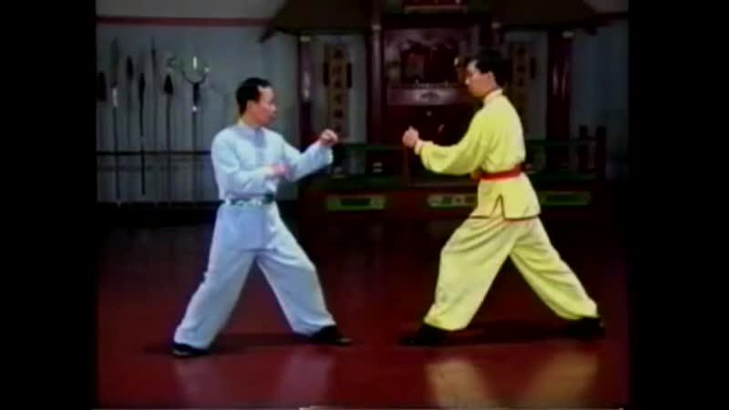 Wing Lam Shaolin tan tuy