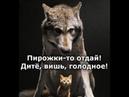 Веселые картинки. Приколы про волков в картинках. Смешные волки.