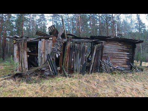 Коп в лесу Что можно найти металлоискателем под землей