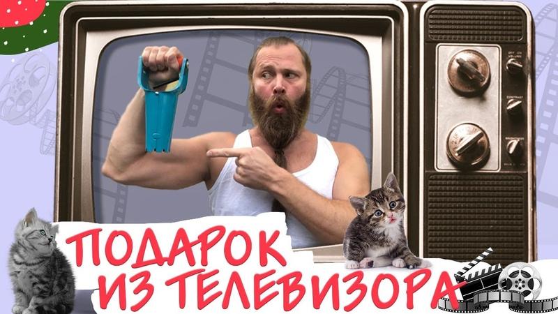 Подарок из телевизора и котики муркотики Принудительная изоляция и воспипание котят Котики 2020