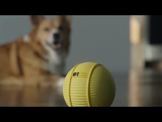 Робот-шар Ballie от компании Samsung