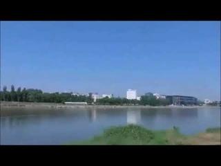 Прогулка по дикому берегу Варшавской Вислы 9  Walk along the wild bank of the Warsaw Vistula 9