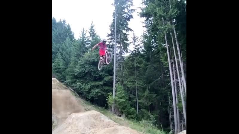 Phil McLean suicide landing