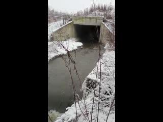 Слив нечистот из ЖК Государев дом, ЖК Видный город и ЖК Суханово парк в реку Гвоздянку
