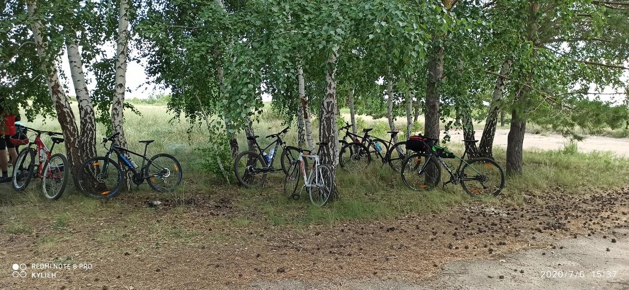 Деревья расположены близко, можно поставить гамак)