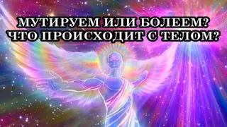 Земля Возносится через 4-е и 5-е измерения, чтобы стать Звездой, а мы, люди, чтобы стать Творцами