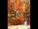 Албанский художник YLLI HARUNI музыка Албанское танго Бабочка автор клипа Зоя Боур-Москаленко