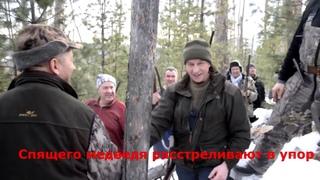 Как губернатор Левченко медведя убивал