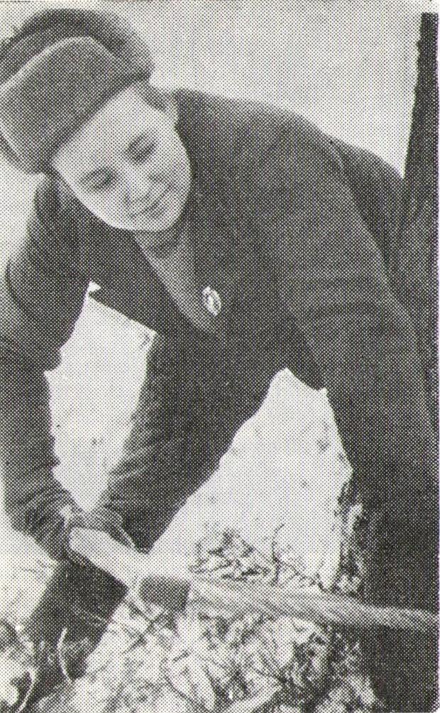 Анна Фомина пилит дерево лучковой пилой. Маленгский леспромхоз, 1943 г. Фото из книги «Очерки истории Карелии», 1964 г.