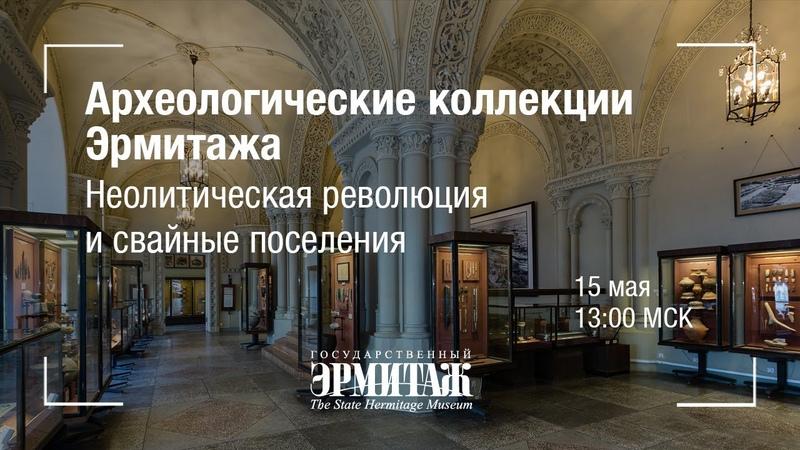 Премьера Археологические коллекции Эрмитажа Неолитическая революция и свайные поселения