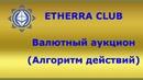 Валютный аукцион алгоритм заработка, игра на понижение.ETHERRA CLUB