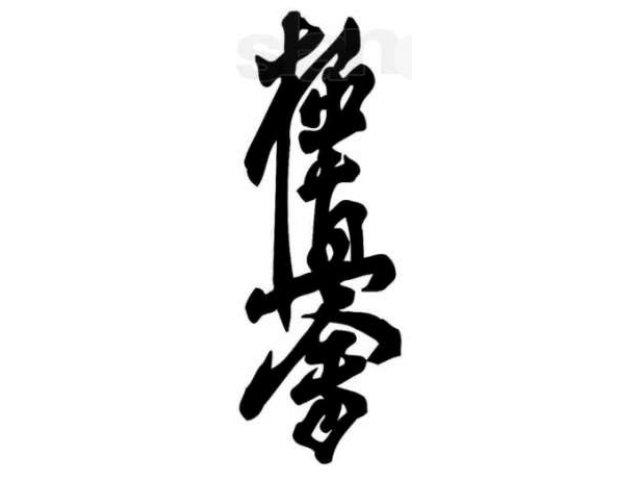 Доги киокушинкай — руководство!, изображение №6