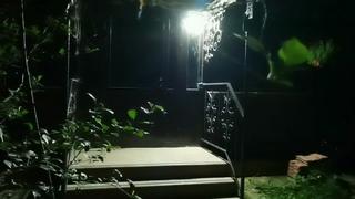 100 LED Водонепроницаемый Уличный Фонарь с Датчиком Движения Бренд: #FOXCNCAR