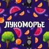 """Студия """"ЛУКОМОРЬЕ"""" г. Балашов"""