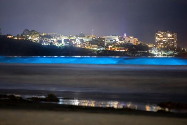 Волны, подсвеченные биолюминесцентными организмами, разбиваются о берег в Сан-Диего, США