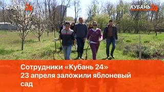 Сотрудники медиахолдинга «Кубань 24» 23 апреля заложили яблоневый сад