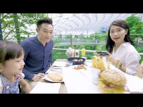Explore a Wondrous World at Jewel Changi Airport