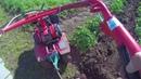 Полоть и окучивать картофельное поле