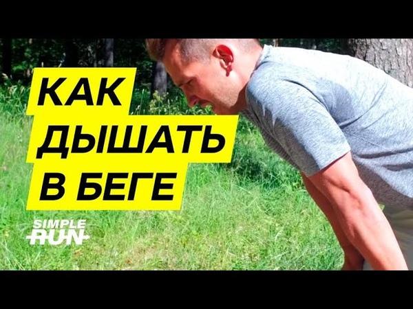 Как дышать 💨 в беге 🏃🏻♂️ Устройство лёгких бегуна