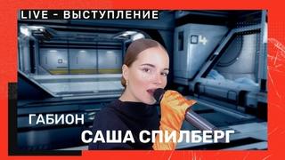 Саша Спилберг - Габион (LIVE-выступление)