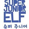 ☆•●●Типичные SUPER JUNIOR ELF●●•☆