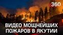 Лесные пожары в Якутии спасатели вынесли на руках олененка. Огонь охватил более 69 тысяч га земли