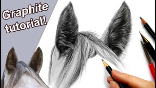 How to draw horse ears and mane | Step by step!