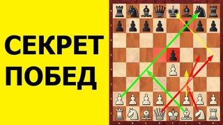 Шахматы. СЕКРЕТ ПОБЕД В ДЕБЮТЕ! Школа шахмат d4-d5.