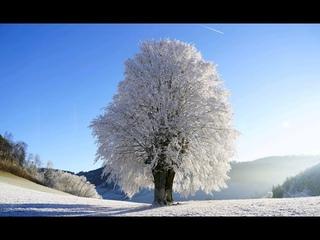 "Korrigierte Version: ""Globale Erwärmung schuld an Schnee - Chaos""   Professor Hahn * klärt uns auf *"