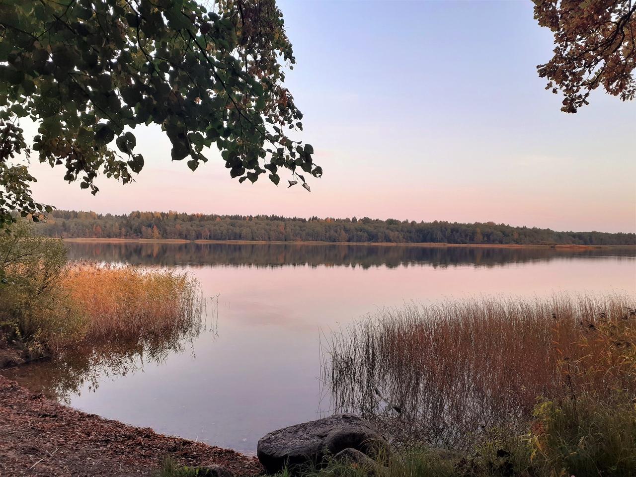 Осенний вечер в Орлино. Пруд в лесу, родники, живописное озеро Орлинское. И электричка