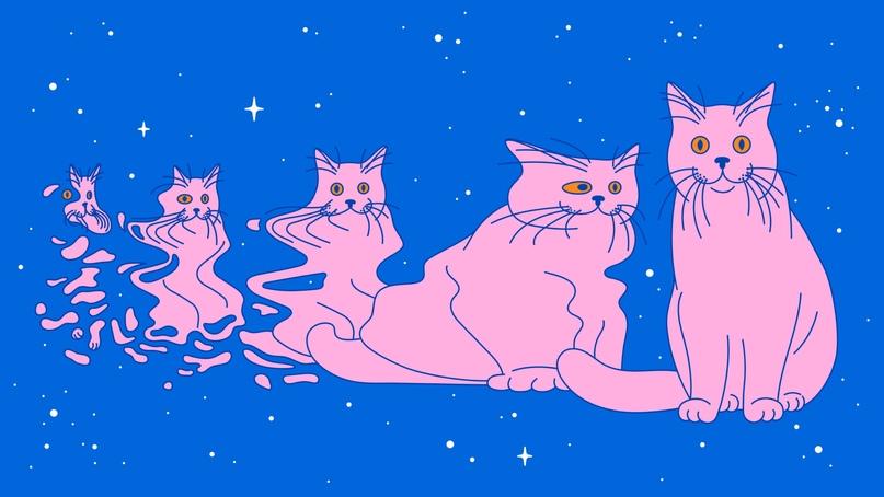 Согласно мысленному эксперименту Эдвина Шредингера кот в коробке может быть и жив и мертв одновременно