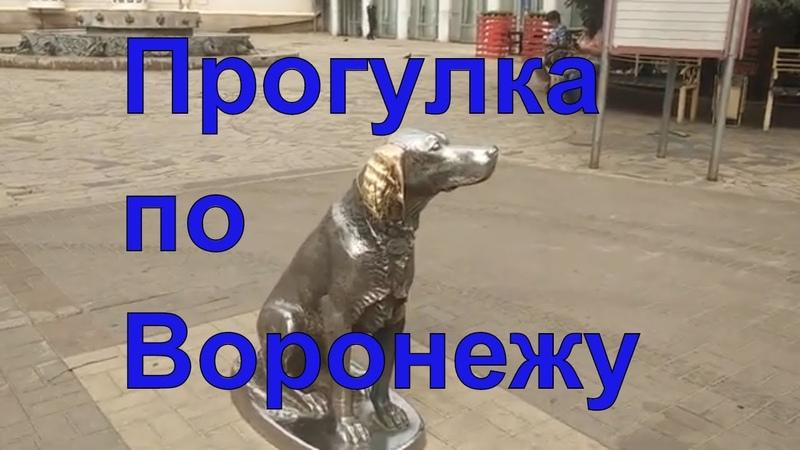 Прогулка по Воронежу Проспект революции или Большая дворянская