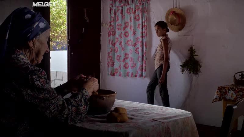 Обитатели пустошей 2017 Farpões baldios Barbs Wastelands