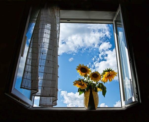 Картинка через окно