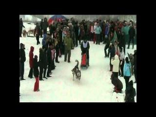 «ICE RAСE» в г. Кемерово(небольшой фильмец)