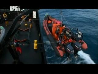 Китовые Войны сезон 1 серия 04