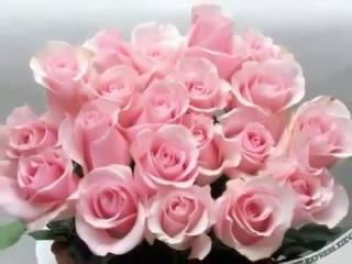 Нехай в твоєму житті для тебе розпускаються найкрасивіші квіти