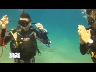 Невероятное иллюзионное шоу на дне Красного моря Святослав Щеглов и дайв центр Дельфин