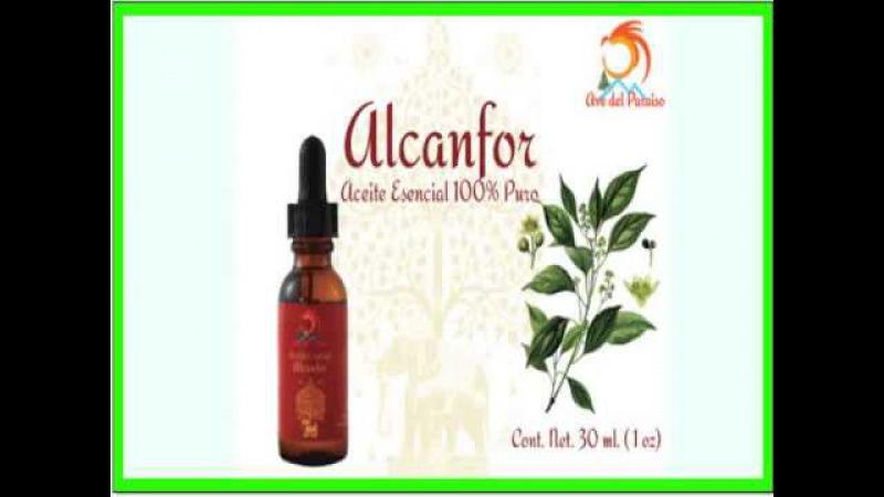 Propiedades del Aceite Esencial de Alcanfor
