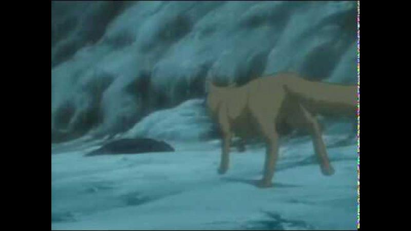 Волчий Дождь Зов Крови