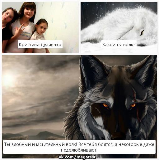 тесты про волков в картинках это упражнение