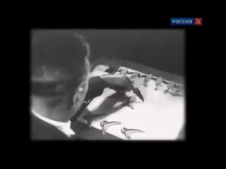 Черные дыры, белые пятна - История анимации 11 - Николай Воинов