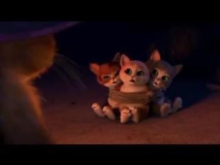 Кот в сапогах и три котёнка