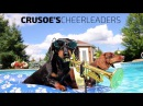 Crusoe s Cheerleaders Dachshund Pool Party Music Video