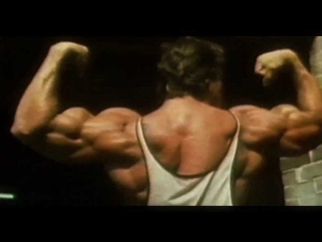 Arnold Schwarzenegger Bodybuilding Motivation 2013 [HD]