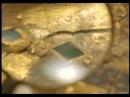 Curse of Tutankhamen