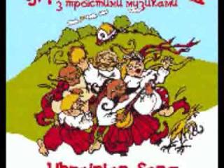 Ukrainian people music / Українська гулянка з троїстими музиками